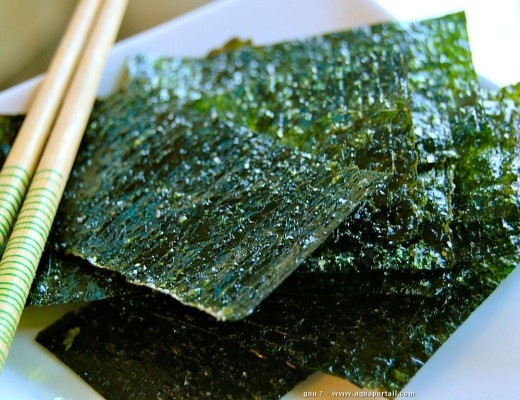 alga-nori-propiedades-nutricionista-valencia-nutt-elisa-escorihuela