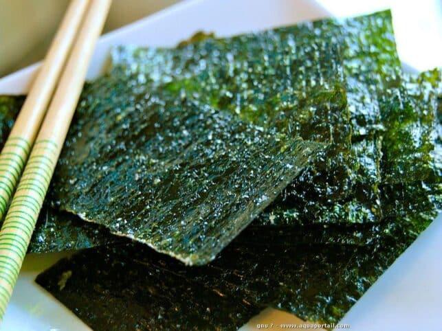 Resultado de imagen de alga nori
