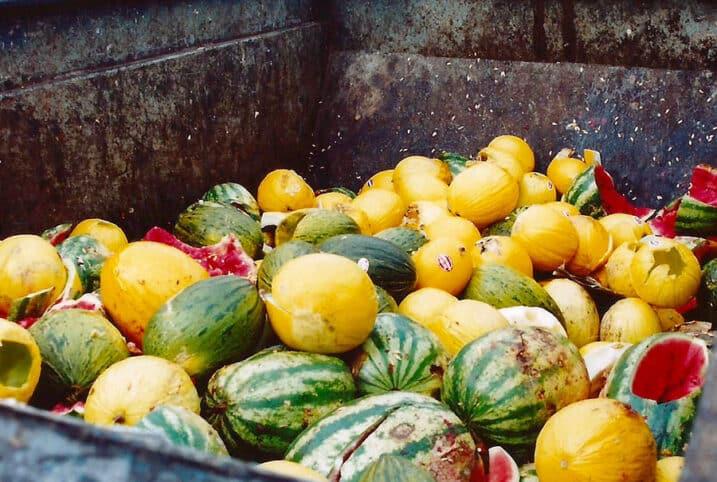 el-desperdicio-de-comida-nutricionista-valencia-nutt-elisa-escorihuela-1