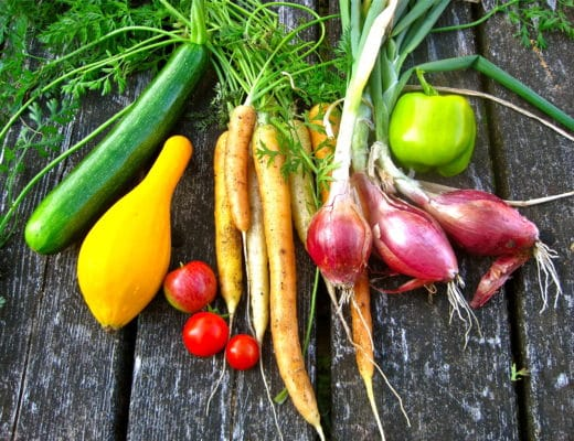 fibra-alimenticia-nutricionista-nutt-valencia-elisa-escorihuela-verdura