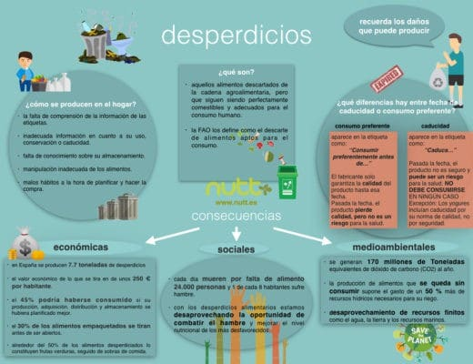 infografia-el-desperdicio-de-comida-nutricionista-valencia-nutt-elisa-escorihuela