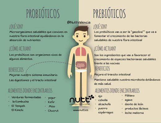 Microbiota Flora intestinal