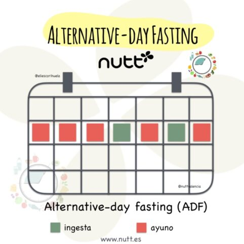 Ayuno Alternative-day fasting (ADF)