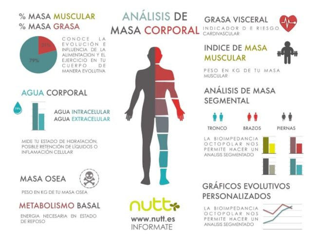 análisis de masa corporal o estudio antropométrico