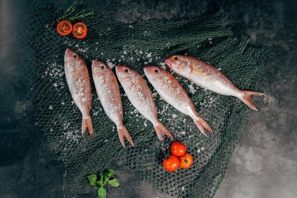 pescado despensa para cuarentena por coronavirus