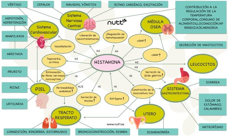 histaminosis deficit dao sintomatología
