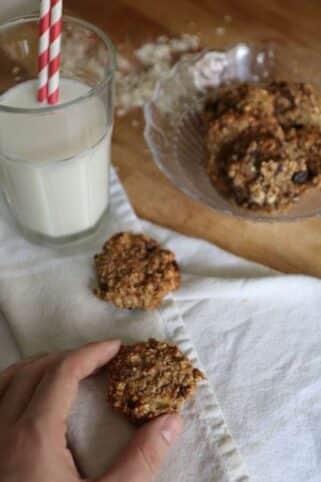 galletas veganas saludables nutricionista valencia